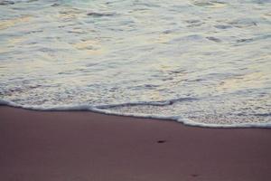 Golden sea photo