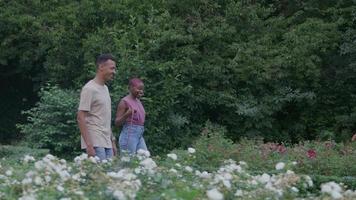 Zeitlupe des jungen Paares, das im Park mit Hund geht video