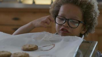 Boy counting freshly baked cookies on baking tray video