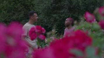junges Paar im Park sprechen video
