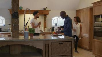 amigos preparando comida en la cocina video