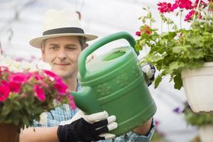 hombre de mediana edad regando las plantas de flores en invernadero foto