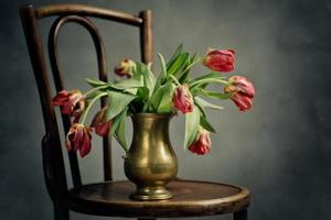 Withered Tulips