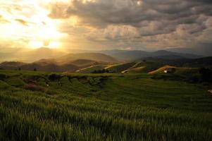 paisaje de campos de arroz en terrazas en la montaña