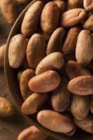 granos de cacao orgánico crudo