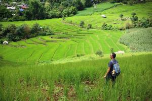 Man and Rice terraces