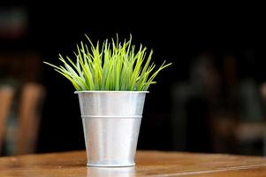 Grass in flowerpot on the table photo