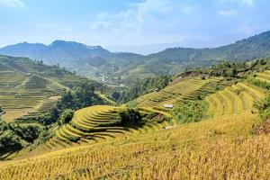 Terraced rice field photo