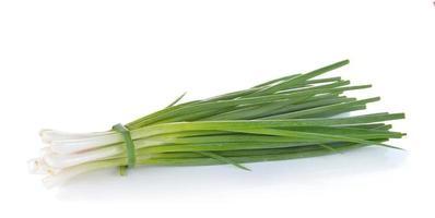 cebolla verde sobre fondo blanco