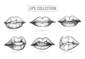Hand Drawn Sketch Lips Collection Design vector