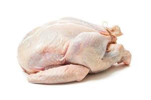 Raw turkey photo