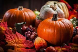 calabazas para acción de gracias y halloween