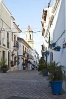 Classical andalusian street with plants