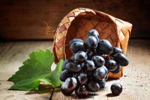 Dark grapes in birch wicker basket