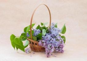 ramo de lilas en una canasta