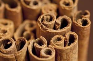 Bunch of cinnamon bark (sticks) photo