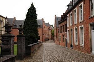 Old houses Leuven 2 Belgium