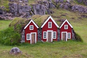 Houses with grass in the roof photo