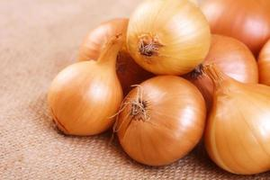 Group of onions on the table photo