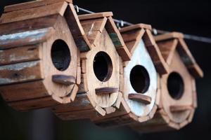 row of wooden bird house.