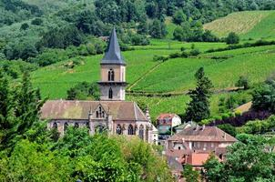 Ribeauville: Church, Houses and Vineyards photo