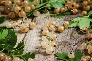 White currants with leaves on old wooden background photo