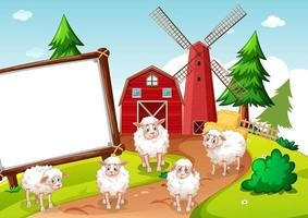 Sheeps in farm and blank banner
