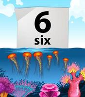 Number six and six jellyfish underwater vector
