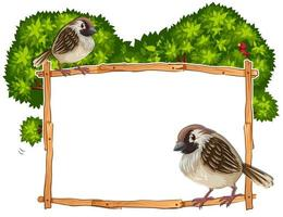 Frame template with two sparrows vector