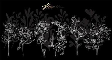 Art flower hand drawing