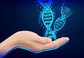 Closeup of female hand holding dna design  vector