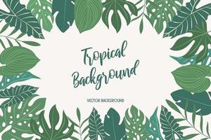 background with tropical leaves vector