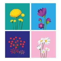 Set of beautiful spring flowers