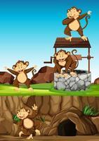 grupo de monos salvajes al aire libre vector