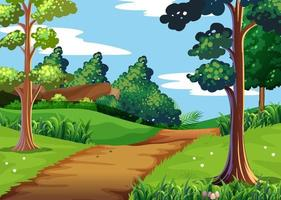 Nature scene with forest and walking trail vector