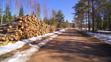 Lots of piled logs on the street side