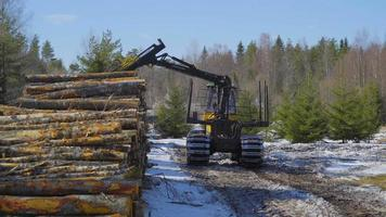 el gran camión de troncos y los troncos