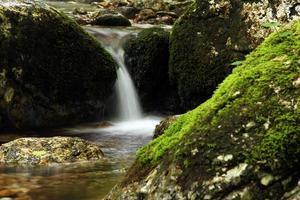 cascata en montagna foto