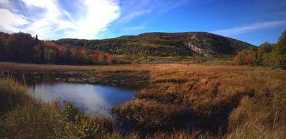 Maine Countryside photo