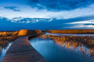 bridge and reed photo