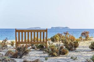 bench on beach under tree with mediterranean sea view