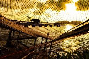 de netten aan de oever.