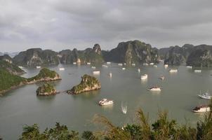 la bahía de Halong foto