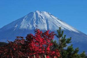 Mt Fuji and Autumn Colors photo