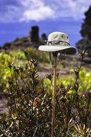 Sombrero de explorador con gafas de sol en el auyan tepuy venezuela foto