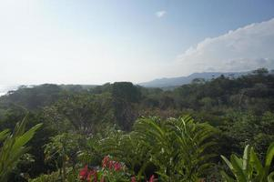 Impressions from Costa Rica photo