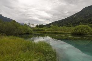Sava spring in Zelenci