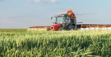 Tractor spraying wheat photo