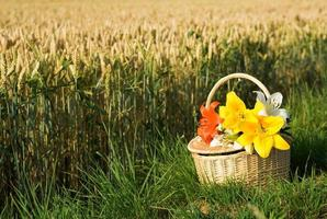 Picnic basket with bunch of flowers photo