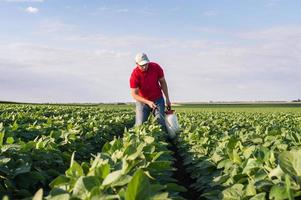 spraying soybean field photo